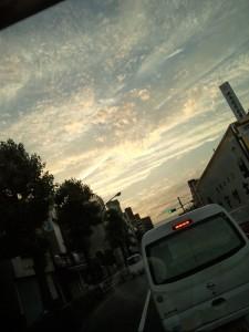 DSC_0314.jpg